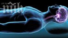 Сънят прочиства мозъка от отрови