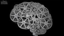 Учени разгадават тайните на мозъка