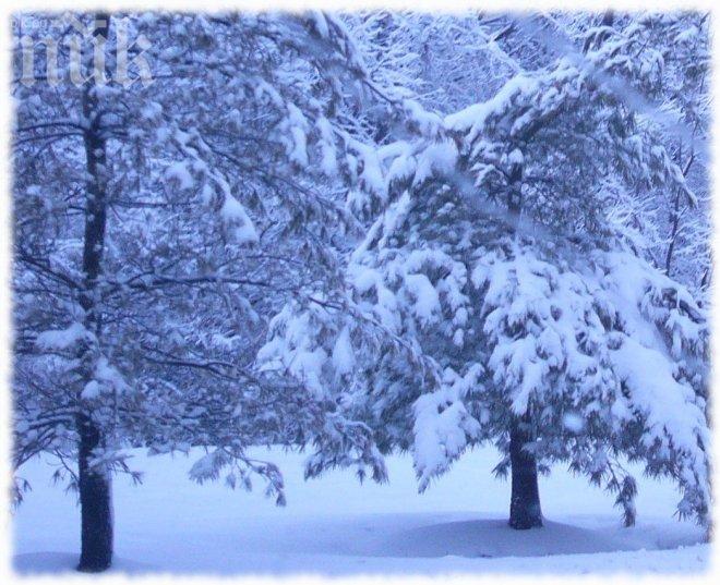 Синоптици: На Коледа - лято, на Нова година - снежен апокалипсис! Най-дълбоки преспи от 35 години насам!