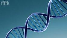 Блокираха ген, виновен за туморите
