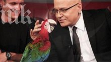 Позорно! Слави пръска по 3000 лв. месечно за папагала си, назначи му гледач на заплата