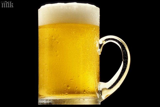 Наши учени правят жива бира от лимец