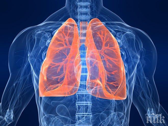 8 симптома, че черният ви дроб е уморен