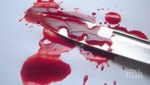 Жестоко! Тийнейджър уби 11-годишната си сестра и рани тежко брат си