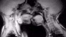 Учени показаха секса отвътре (видео 18+)