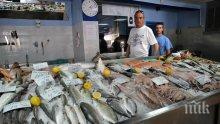 Рибарският дух на Бургас възкръсва по Никулден