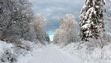 Ужас! Дете замръзна на връщане от училище в Русия