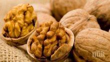 Орехите подобряват паметта