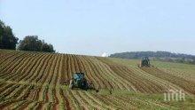 Малките земеделски производители искат достъп до европейските програми </p><p>