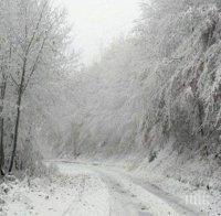 Пътят между Асеновград и Кърджали е затворен
