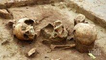 Кучета носят човешки останки в Перник - гражданите ужасени