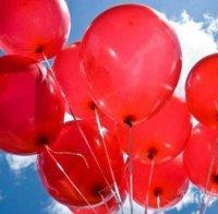 Отбелязваме световния ден на хемофилията