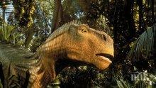 Китайският град Хеюан държи световният рекорд за най-голям брой яйца на динозаври