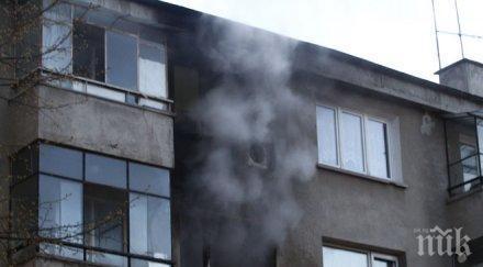 пик голям пожар хемус столицата чудо жертви снимки