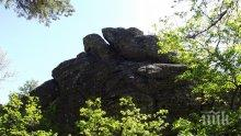 Вълшебен камък цери народа в Джебел