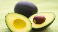 Чудо за здравето - авокадото лекува левкемия