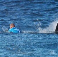 див късмет сърфист размина косъм зъбите акула