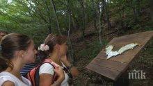 """Парк """"Странджа"""" разкрива тайнствения свят на прилепите"""