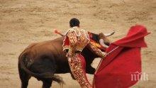 Трагедия! Мъж загина, след като бе прободен от бик в сърцето