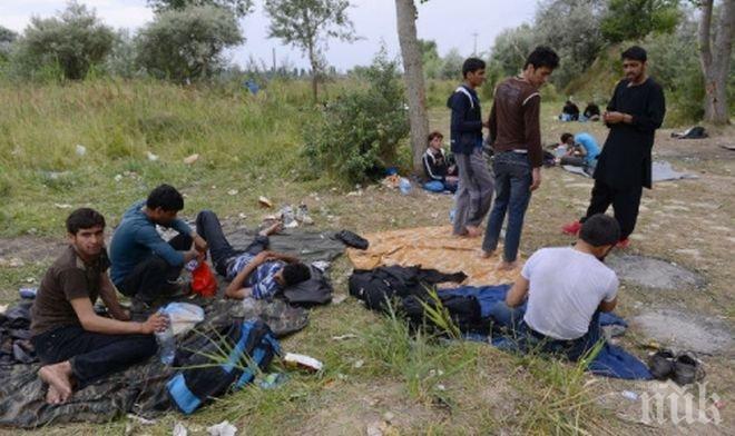 Край Одрин Турция е спряла стотици имигранти, насочили се към Гърция