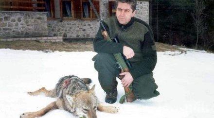 Зевзеци пращат Гоце да озапти изчезналата вълчица в Благоевград