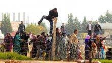 Ловна дружинка излови 50 нелегални мигранти</p><p>