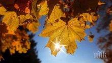 НИМХ: Все още топло за средата на ноември