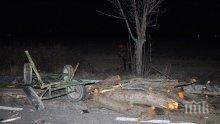 Тежка катастрофа в Търговищко! Каруцар, шофьори и кон оцеляха по чудо