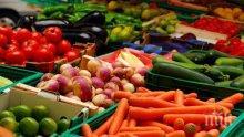 Проверяват за нитрати зеленчуците в Шумен