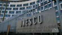 """Вековните букови гори в """"Централен Балкан"""" на път да влязат в ЮНЕСКО"""