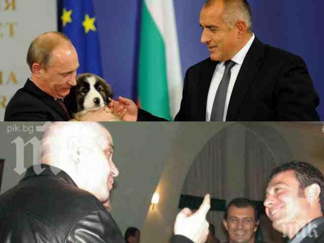Ясновидката Николета Йорданова със сензационна прогноза за България и света! Борисов и Путин ще се обединят, Слави Трифонов ще се провали като политик!