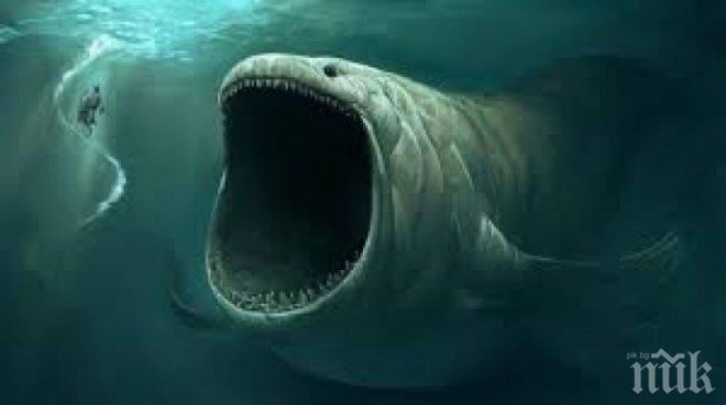 Гигантско чудовище изплува от океана