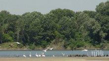 """Приет е планът за управление на природния парк """"Персина"""""""