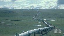 Румъния официално поиска внос на ирански природен газ