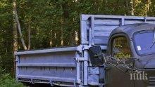 Горски установиха незаконна сеч на дървесина в Говедарци