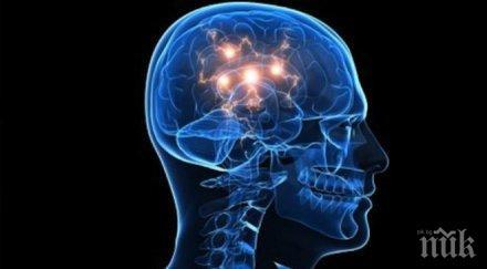 алцхаймер паркинсон бъдат лекувани изкуствени невронни мрежи