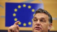 """Половин милион души са последвали Виктор Орбан в социалната мрежа """"Фейсбук"""""""