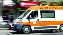 Огромен клон падна върху движеща се линейка в Добрич (снимка)