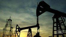 Ирак увеличи производството на петрол до рекордни нива през март