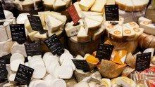 Европейско сирене гризе Америка
