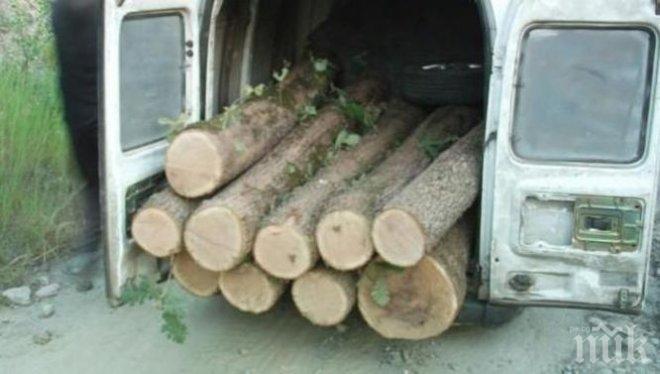 ДАМТН и агенцията по горите провериха 40 предприятия в дървопреработвателната промишленост