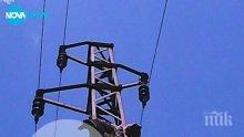 Мечка се покатерила на електрически стълб, токът я убил на място