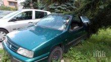 Клошари живеят в автомобил, паркиран неправилно на улица в София (СНИМКА)</p><p>