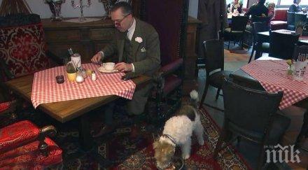 Хит в Швеция! Ресторант предлага меню за кучета