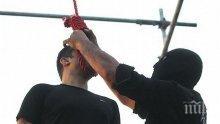 Обесиха сериен изнасилвач в Иран