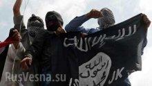 YouTube и Facebook с атака срещу джихадистите