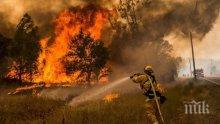 Горският пожар в Калифорния е изпепелил 150 къщи