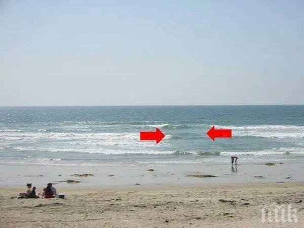 Ако видите това в морето, никога не влизайте, защото няма да може да излезете!