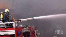 Голям пожар пламна в гора в Ямболско