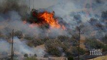 Пожар вилнее между селата Рудник и Изворище, засегнати са хиляди декари